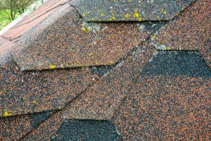 Raise-the-Roof-How-Roof-Coatings-Protect-Your-Roof-and-Why-Are-They-Cost-Effective-Roofers-in-Irving-TX