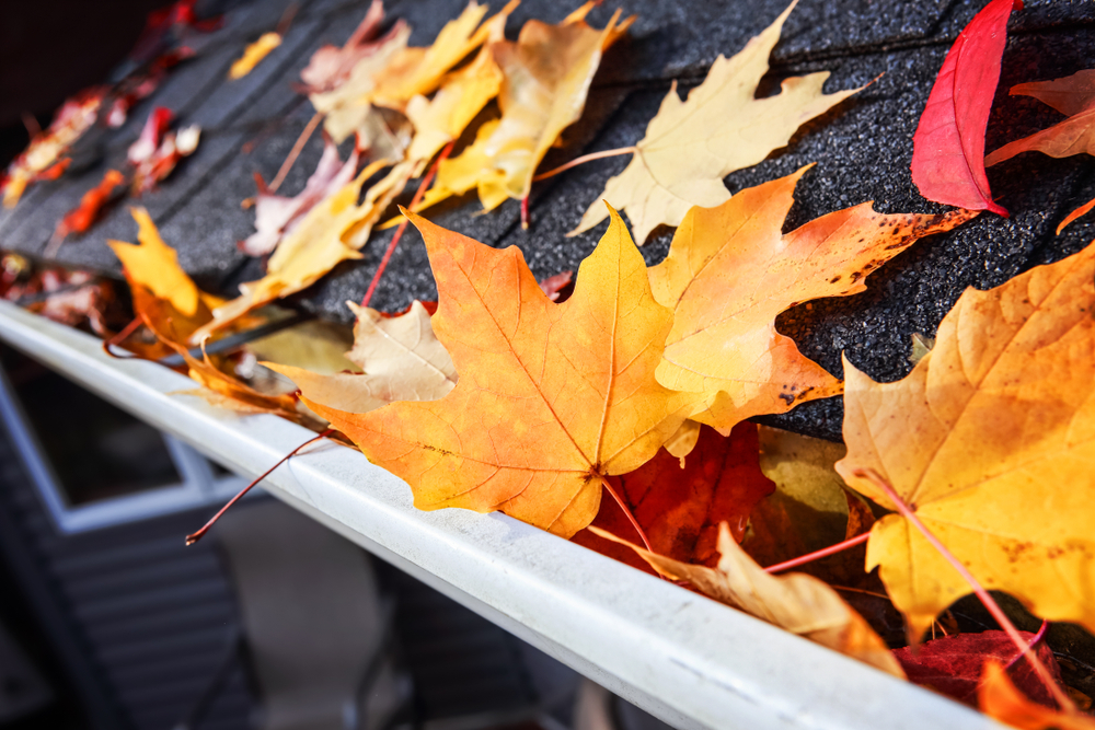 Fall Roofing Tips to Prepare for Winter