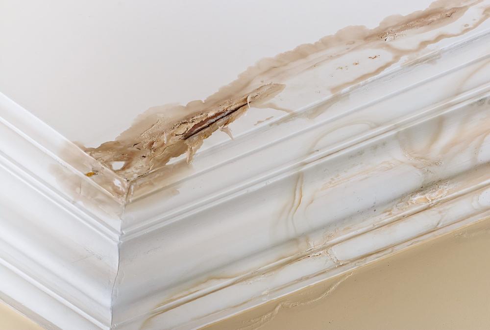 Identify a Roof Leak
